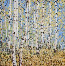 Birkenwald im Herbst von Helmut Hackl