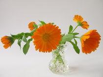 Ringelblumen in der Vase von Heike Rau