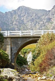 The Bridge by crismanart