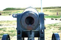8 pound Cannon von Dan Richards