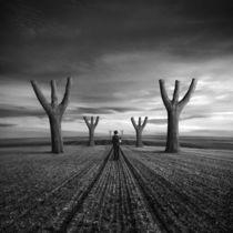 Valley of the Blind by Dariusz Klimczak