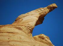 Wächter der Wüste von loewenherz-artwork