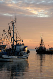 Fishing Boats at Sunset von John Mitchell