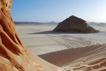 Sinai14
