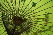Sonnenschirm grün von peter-adam