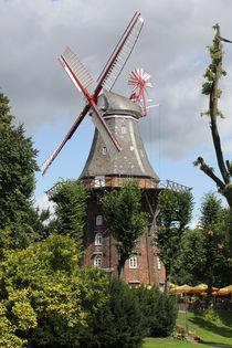 Mühle im Sonnenschein von Marcus Skupin
