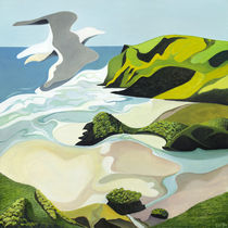 Gull Over Anawhata von Guy Harkness