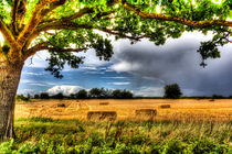 The Field Beyond The Tree von David Pyatt