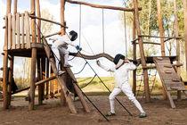 Fencing nr 10 by Irene Hoekstra