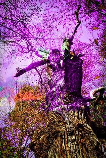 Natur Abstrakt  36 by Walter Zettl