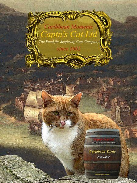 Captncatsposter3