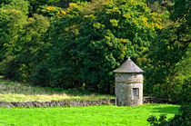 Dovecote At Swainsley, near Warslow von Rod Johnson
