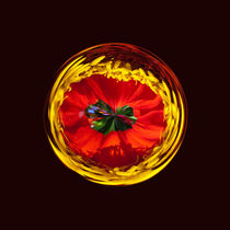 Flower globe in red and yellow von Robert Gipson