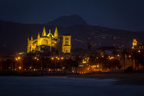 La Seu at night by gfischer
