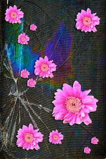 Broken Dreams by Randi Grace Nilsberg