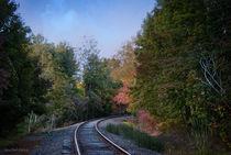 Autumn Tracks von Lena Wilhite