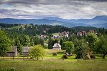 Carpathian mountains in Ukraine von Victoria Savostianova