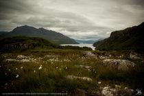 Loch Meereen von Kiara Black