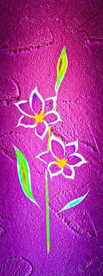 Blütenträume 27 Glockenlilie von Walter Zettl