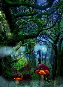 Der magische Wald von Heidi Schmitt-Lermann