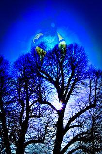 Unser schöner blauer Planet wie lange noch? 5 by Walter Zettl