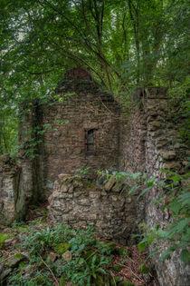 Derelict Cottage von David Tinsley