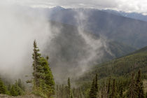 Mists Olympic National Park by Peter J. Sucy
