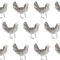 Chickens by Caroline Allen