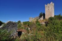 Dvigrad Ruinenstadt, Istrien, Kroatien von Mark Gassner