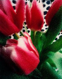 Polka dot Tulips by Marcia Treiger