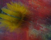 sunflower von Art of Irene S.
