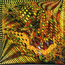 Ziehharmonika by Helmut Licht