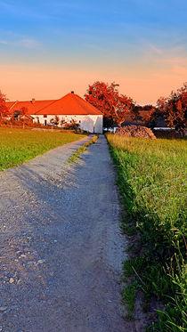 Wanderung an einem Sommermorgen | Landschaftsfotografie von Patrick Jobst