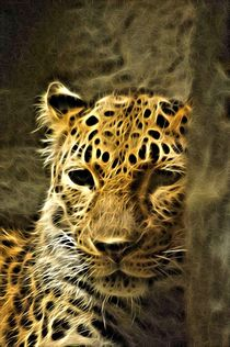 Leopard Art by Deniece Platt