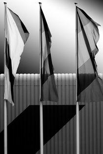 Wehende Fahnen  by Bastian  Kienitz