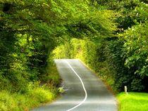 Landstraße im County Kerry von gscheffbuch