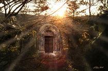 Das magische Portal by Alois Reiss