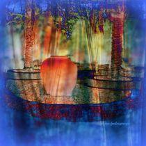ILLUSSIONS by Sherri nicholas