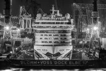 AIDA im Dock von Jan Adenbeck