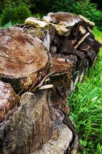 Gestapeltes Holz von framboise