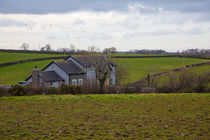 Irish landscape, Donaghcloney, N. Ireland by Tasha Komery