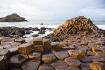Giant's Causeway, Northern Ireland von Tasha Komery