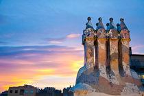 Gaudi chimney 2, Barcelona, Spain by Tasha Komery