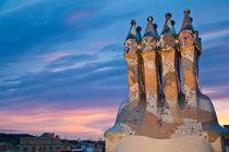 Gaudi chimney 1, Barcelona, Spain by Tasha Komery