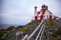 Lighthouse, Newfoundland, Canada by Tasha Komery