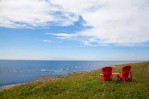 For two, Newfoundland, Canada von Tasha Komery