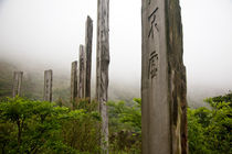 The Wisdom Path, Hong Kong von Tasha Komery
