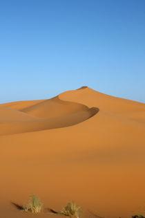 Swooping dune, Sahara by Tasha Komery