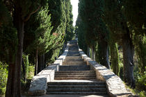 St. Antony's Stairway, Korcula, Croatia by Tasha Komery