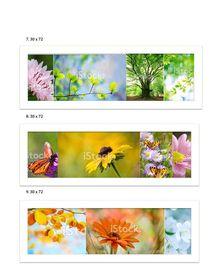 Floral Collage Collection von Sarah Sutton
